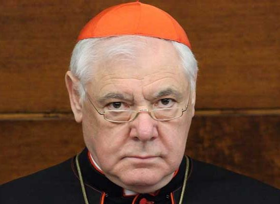 "Cardinal Müller: ""Amazon Synod, a Pretext to Change the Church"""