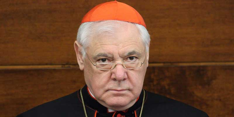 """Cardinal Müller: """"Amazon Synod, a Pretext to Change the Church&qu"""