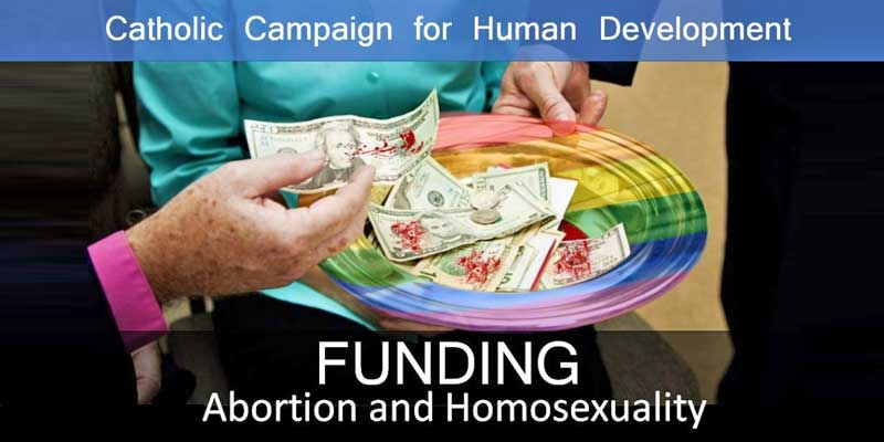 Pro-Family Groups Petition US Bishops to Stop Funding Pro-abortion, Pro-LGBT Organizations