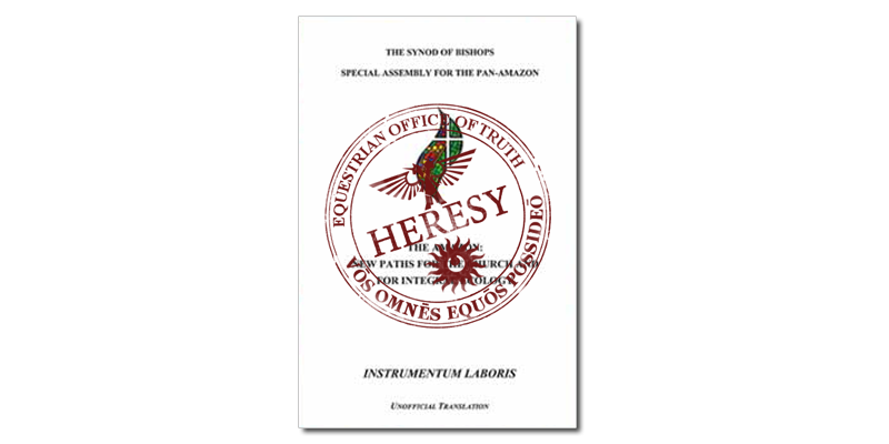 Ask Your Bishop To Publicly Condemn The Heretical Pan-Amazon Working Document