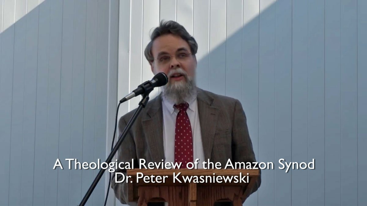 WATCH: A Fantastic Theological Review of the Amazon Synod