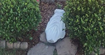 Statue of Virgin Mary Beheaded at Tennessee Parish