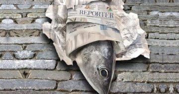 'Fishwrap' Calls for Reprisals against Catholic Trump Supporters